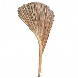 Coconut Natural Broom